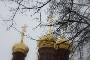 Купола Черниговского храма.Гефсимано-Черниговская пустынь