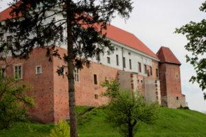 Замок. Сандомир