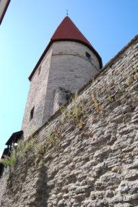 Таллин 8